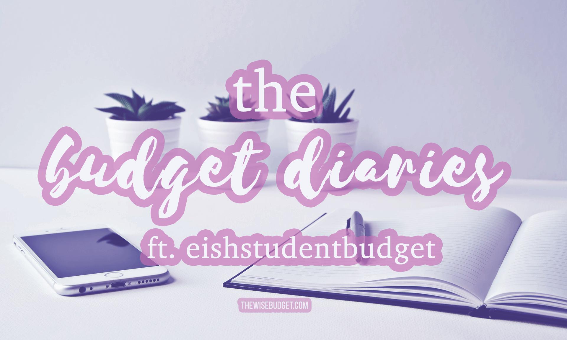 thewisebudget the budget diaries interviews eishstudentbudget