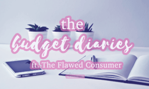 thewisebudget the budget diaries the flawed consumer